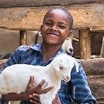 gc-fy16_goats_150x150